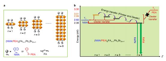 安达千波矢Nat. Chem.:三重态调控可实现高效钙钛矿发光二极管