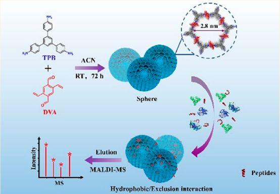 林子俺J. Am. Chem. Soc.:室温下合成尺寸可控制的均匀球形共价有机框架,用于高效富集疏水性肽