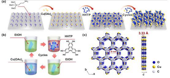 陈龙、金超Angew. Chem. Int. Chem.:用于自旋阀的2D半导体金属有机框架薄膜