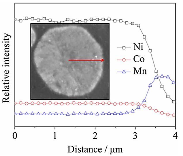 图4U-NCM颗粒的截面EPMA图像