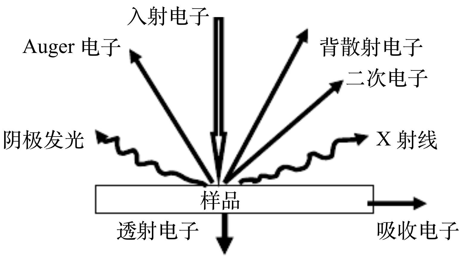 图2电子与样品相互作用