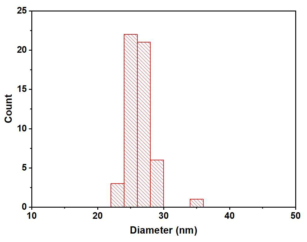 图11完成的粒径分布图