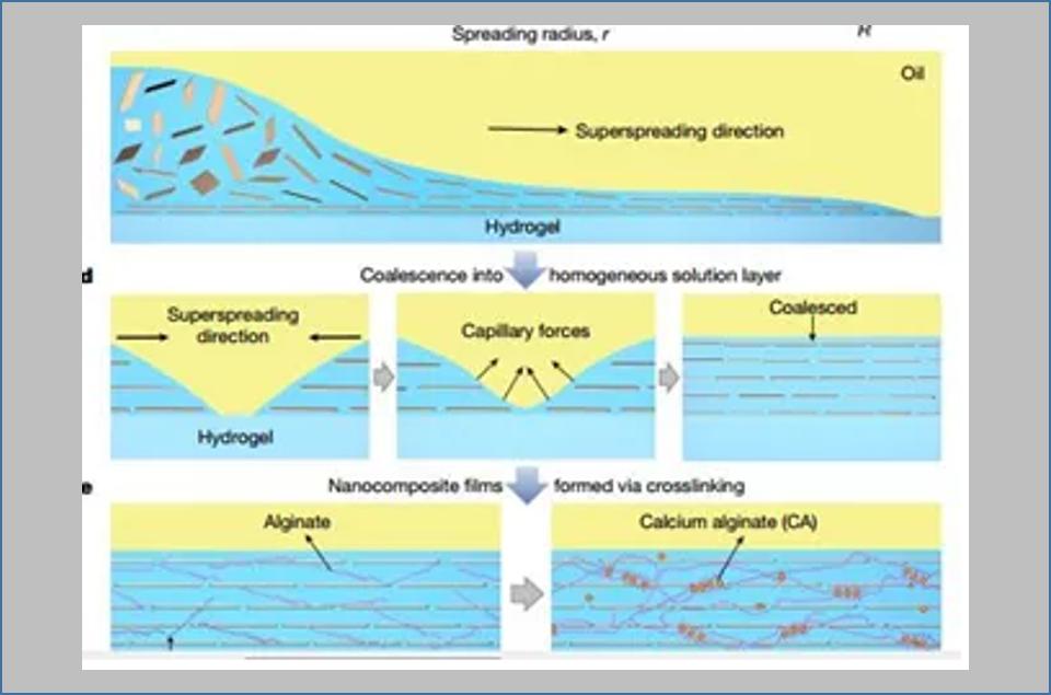 北航刘明杰团队最新Nature:超强的层状纳米复合材料来临!